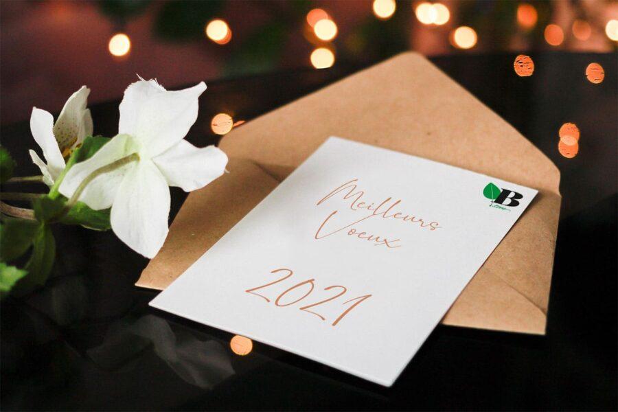 Bonne année sur Biopaj.com